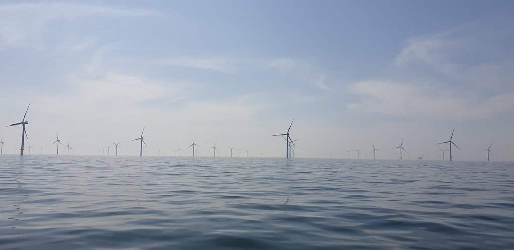 Wind turbines off the coast of Brighton